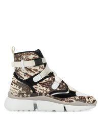 Chloé Sonnie Sneakers in het Multicolor