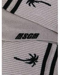 Chaussettes rayées à logo palmier en intarsia MSGM en coloris Metallic