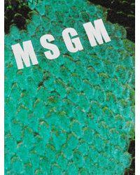 MSGM スネークプリント ビキニ Green