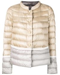 Herno Multicolor Classic Padded Jacket