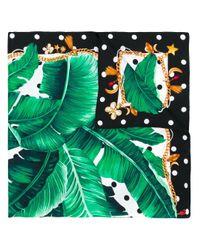 Платок С Растительным Принтом Dolce & Gabbana, цвет: Green