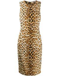 Roberto Cavalli レオパード ドレス Multicolor