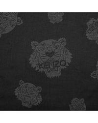 KENZO - Multi Tiger Scarve Black - Lyst