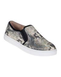 J/Slides   Multicolor J Zee Slip-On Sneaker Natural Snake   Lyst