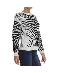 DIESEL Multicolor Zebra Cotton Blend Jacquard Sweater