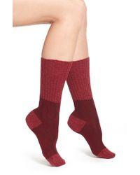 Pantherella - Purple 'chloe' Cable Knit Socks - Burgundy - Lyst