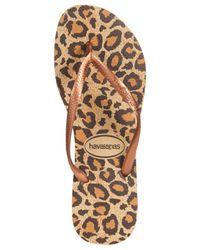Havaianas - Natural Women'S Slim Animal Flip Flops - Lyst