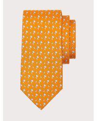 Ferragamo Seidenkrawatte mit baumwolle-print - Orange