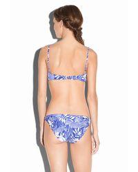 MILLY - Blue Zebra King Maxime Underwire Bikini Top - Lyst