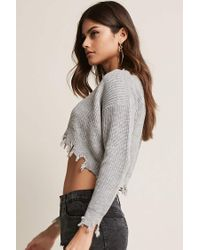 Forever 21 Gray Shark Bite Crop Sweater