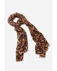 Forever 21 Leopard Print Oblong Scarf , Brown/black