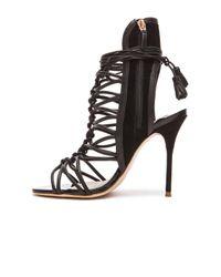 Sophia Webster Black Lacey Lace-up Gladiator Sandals
