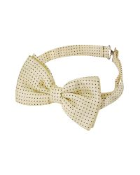 FORZIERI | Natural Small Polkadot Pre-tied Silk Bowtie for Men | Lyst