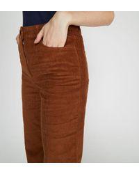 Pantalon velours Cyprien droit coton Galeries Lafayette en coloris Brown