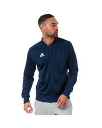 Adidas Blue Condivo 18 Polyester Jacket for men