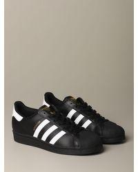 Adidas Originals Multicolor Sneakers for men