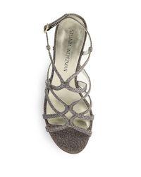 Stuart Weitzman Multicolor Turningup Sandals