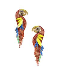 Elizabeth Cole Multicolor Jewelry 24k Plated Crystal Statement Earrings