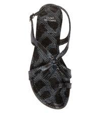 Stuart Weitzman Black Buzzer Flat Sandal