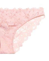 H&M - Pink Lace Bikini Briefs - Lyst