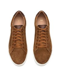 H&M Brown Trainers for men