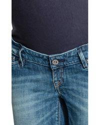 H&M Blue Mama Denim Shorts
