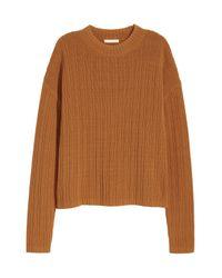 H&M Brown Rib-knit Jumper