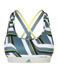 Adidas Blue Don