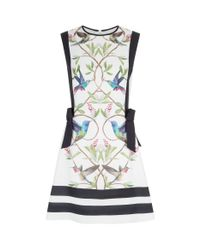 Ted Baker White Kathiee A-line Dress