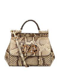 Dolce & Gabbana Multicolor Mini Sicily Embellished Python Shoulder Bag