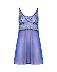 Wacoal Blue Lace Perfection Chemise