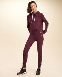 Hollister - Purple Moto Fleece Leggings - Lyst