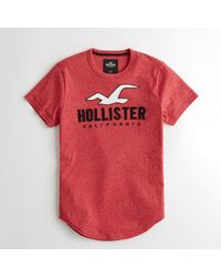 Hollister - Red Guys Logo Graphic Tee From Hollister for Men - Lyst
