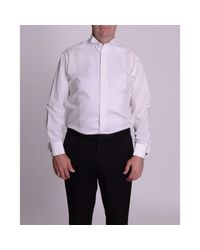 Double Two White Plain Classic Fit Wing Collar Dress Shirt for men