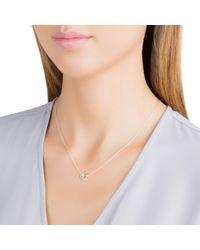 Daisy London | Multicolor Kn3013 Ladies Necklace | Lyst