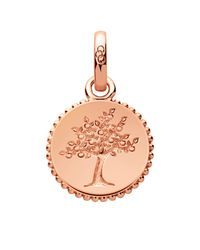 Links of London | Pink Amulet Tree Of Life Charm | Lyst