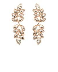 Coast   Metallic Ivy Longline Earrings   Lyst