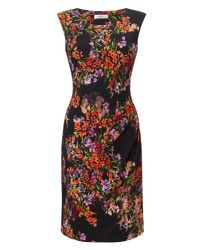 Precis Petite Multicolor Petite Printed Jersey Dress
