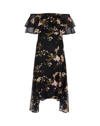 Coast Black Grace Embroidered Dress
