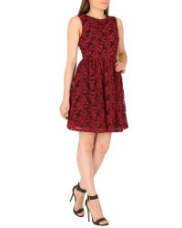 Cutie - Embroidered Floral Net Dress - Lyst