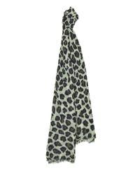 Jaeger | Green Wool Silk Leopard Print Scarf | Lyst