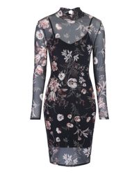 Jane Norman   Black Printed Mesh Bodycon Dress   Lyst