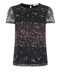 Oasis | Black Fading Daisy Lace Print T-shirt | Lyst