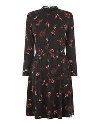 Warehouse Black Snowdrop Floral Print Dress