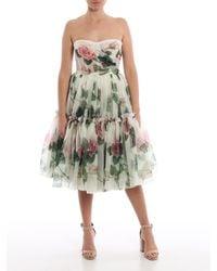 Dolce & Gabbana White Tropical Rose Printed Midi Dress