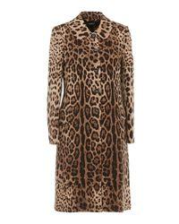 Dolce & Gabbana Multicolor Leo Print Wool Coat