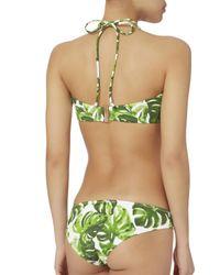 Caroline Constas Mer Green Kali Leaf-printed Bikini Bottom