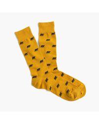 J.Crew Yellow Bear Socks