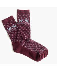 J.Crew Purple Reindeer Trouser Socks for men