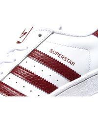 Adidas Originals - White Superstar for Men - Lyst